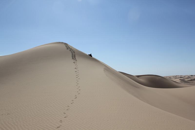 04 The Dunes (53).JPG