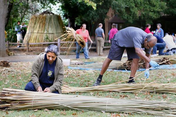 Kotcha Rebuilding