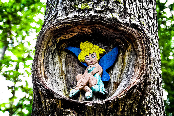 """Tom Rhodes Tree Carving Trail """"Enchanted Forest"""" - Warsaw, Virginia"""