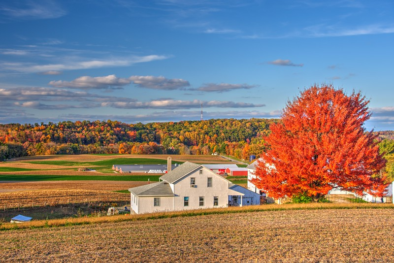 Fall-color-kidron-Ohio-2016-25thBeechnut-Photos-rjduff.jpg