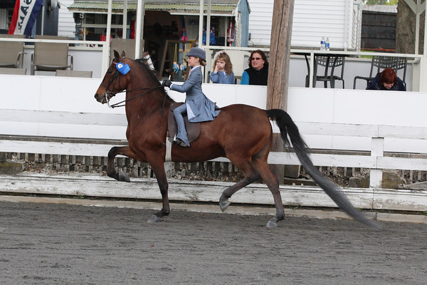 051 Walk-Trot 12 & Under Equitation
