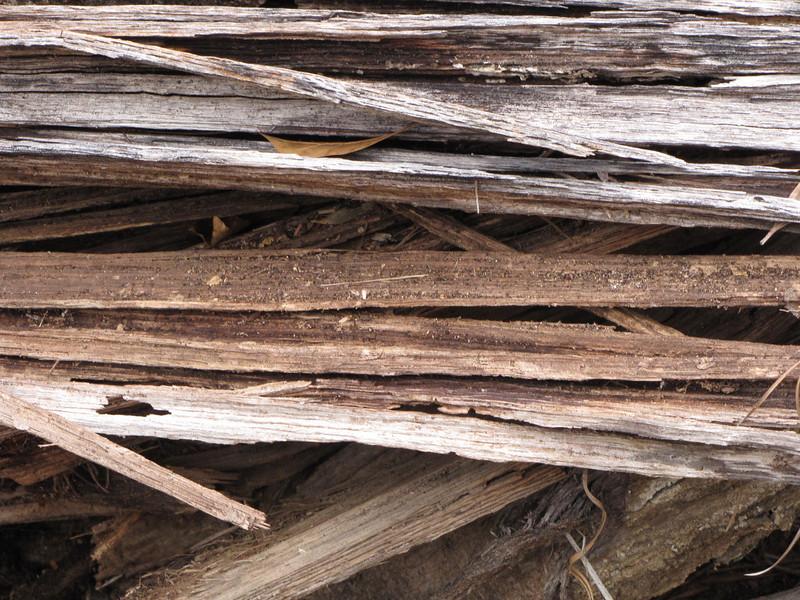 wood splinters.JPG