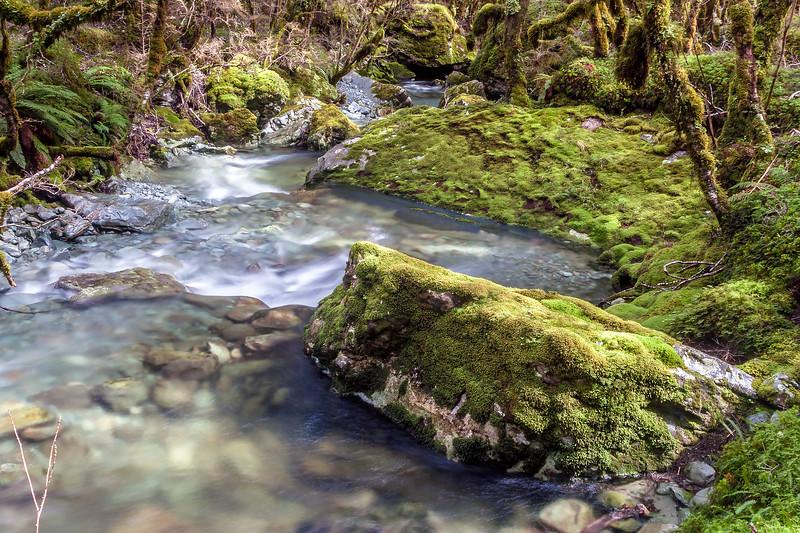 Upper Caples River