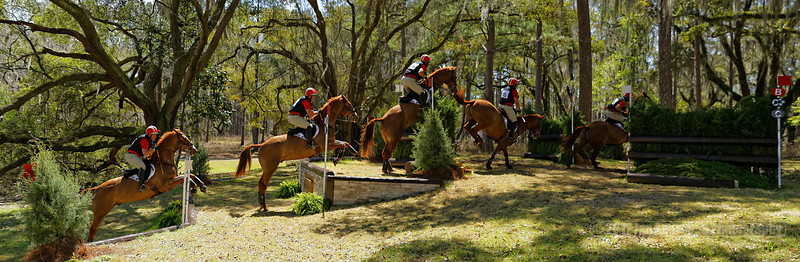 Red_Hills_ International_Horse_Trials_Day_3_3-8-2014_Stairway_to_Heaven_Sequence_ID.jpg