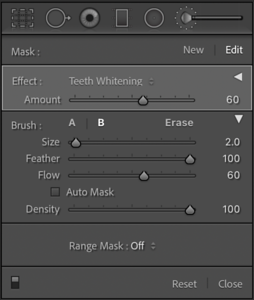 Lightroom - How To Alter The Adjustment Brush Intensity