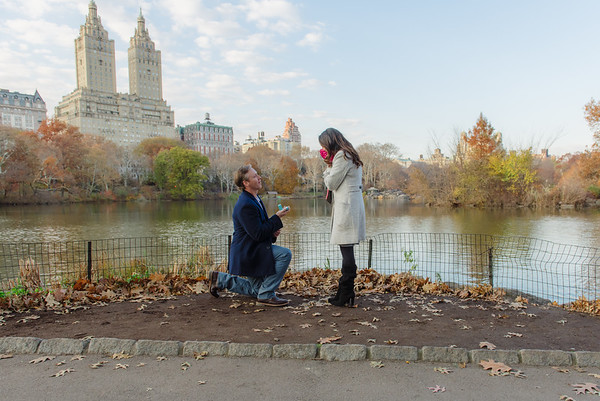 Deanna & Jeff Central Park Proposal