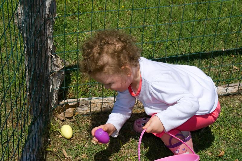 Emmie Picking Up Eggs.jpg