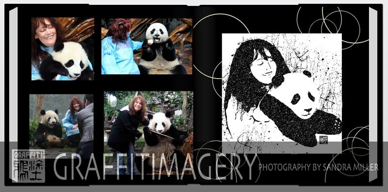 Screen shot 2010-09-23 at 2.25.12 PM.png