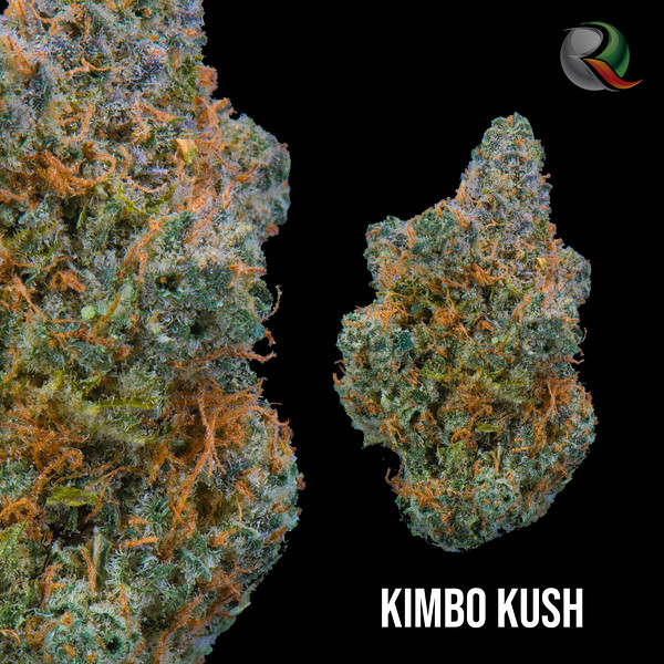 Kimbo Kush.jpg