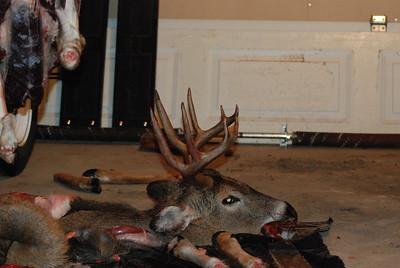 2009 Deer