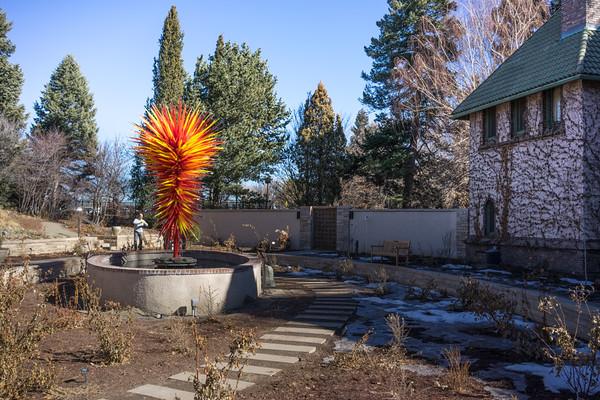 Denver Botanic Gardens 2.8.15