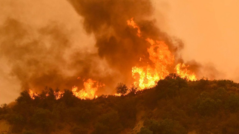 sd-me-california-fires-20170709.jpg