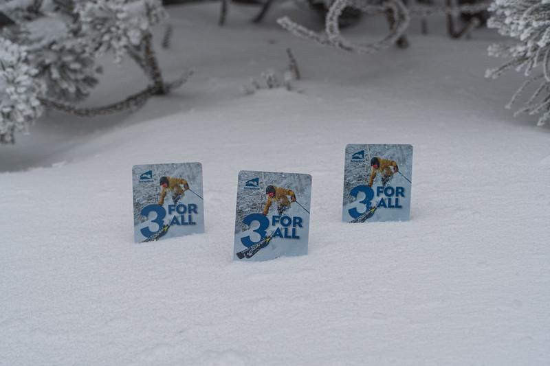 2019-12-06_SN_KS_December Snow-04933.jpg