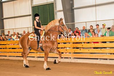 Draft Horse Show - Grange Fair - Friday - 8-28-2015