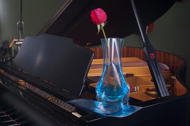TS Vase-8770.jpg