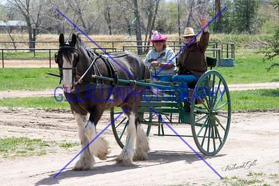 Colorado Driving Society April 15th 2017