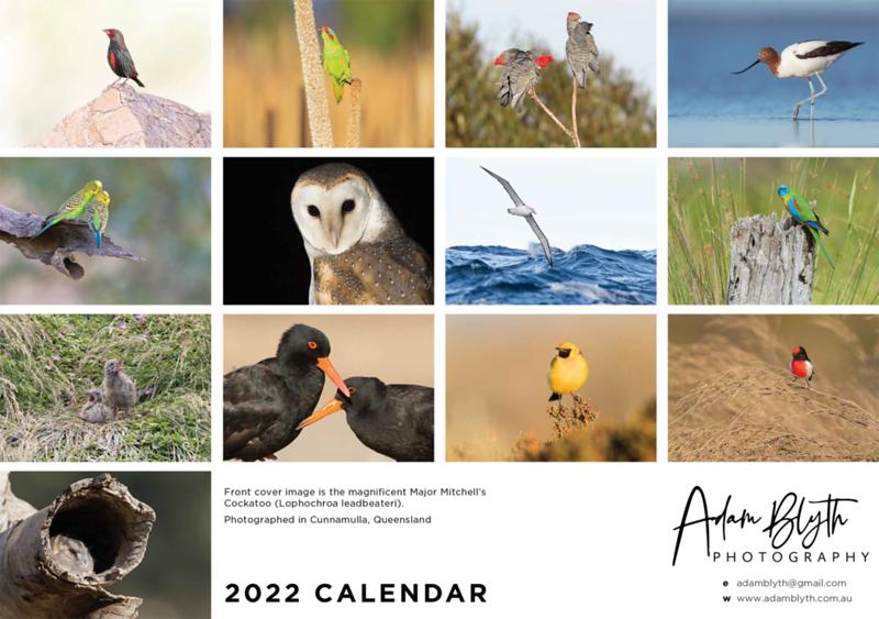 2022_calendar_rear_small.png