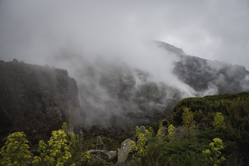 Kilimanjaro_Feb_2018-47.jpg