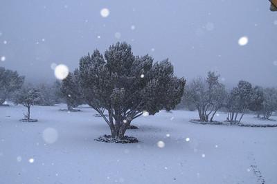 4-14-12-Snowstorm