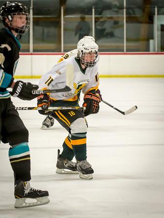 Edison Ice Hockey