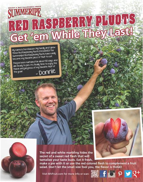 Red Raspberry Plumcot Poster with Don Klassen