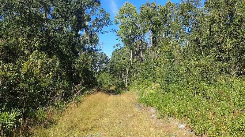 Pumpkin Hill Creek Preserve Trails
