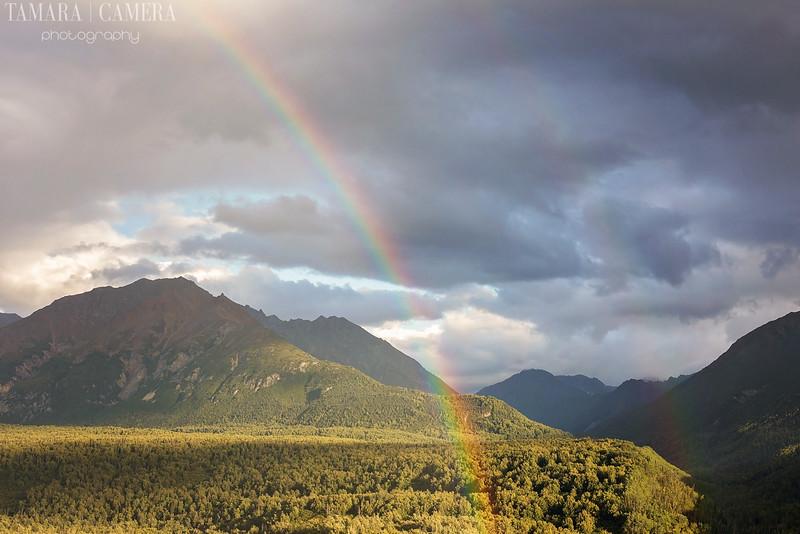 Rainbows-2-2.jpg