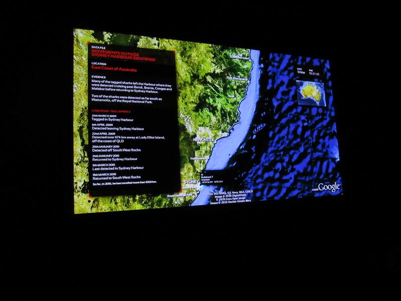 Sydney - Sydney Aquarium-32.JPG