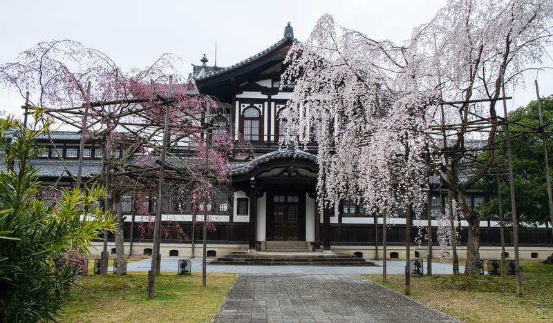 Nara Day 5 (338 of 374).jpg