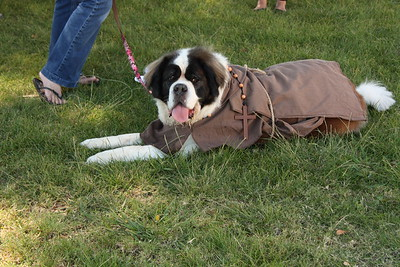10-05-13 St. Francis Pet Costume Contest