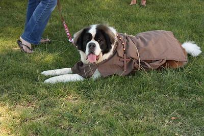 10-05-13 St. Francis Pet Costume Contest
