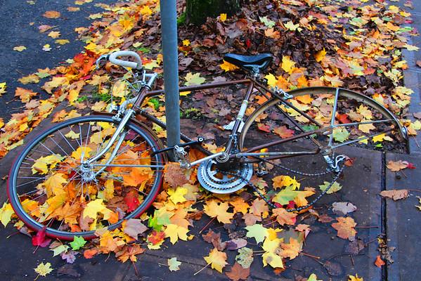 Portland - November 2012