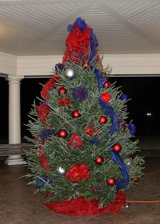 SGA Christmas Tree Lighting 2013