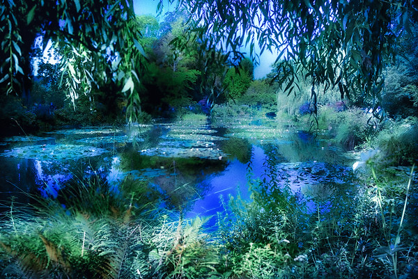 Giverny - The Home of Clude Monet
