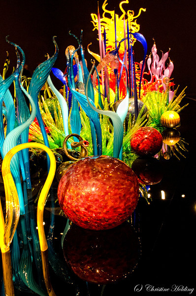 Chihuly Exhibat 2012