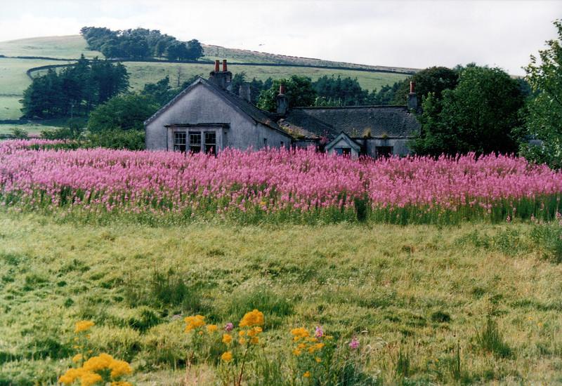 1990_August_Scotland _0009_a.jpg