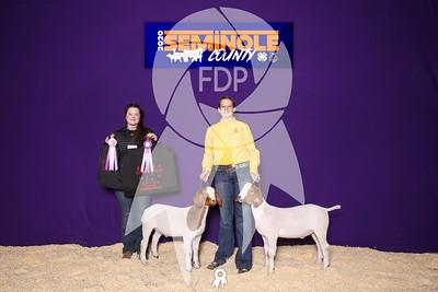 Seminole County Livestock Show