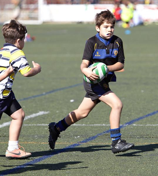 9833_12-Oct-13_TorneoPozuelo.jpg