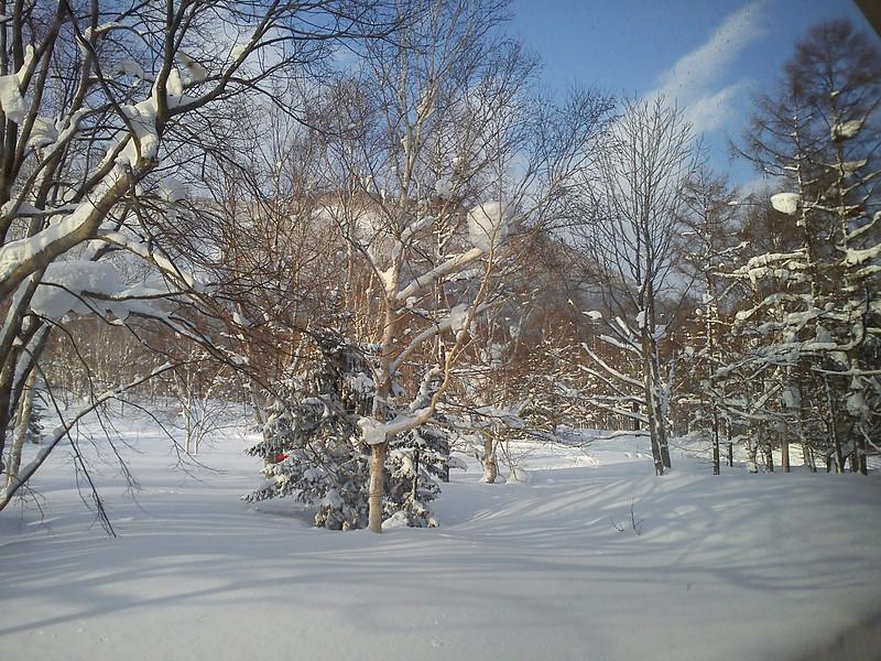 2012_02_17-16_43_56.jpg