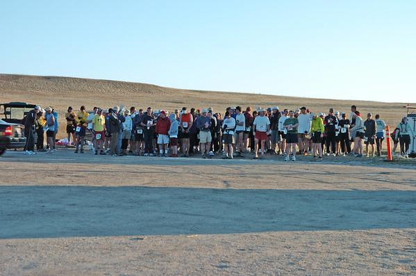 2007 Antelope Island Buffalo Run