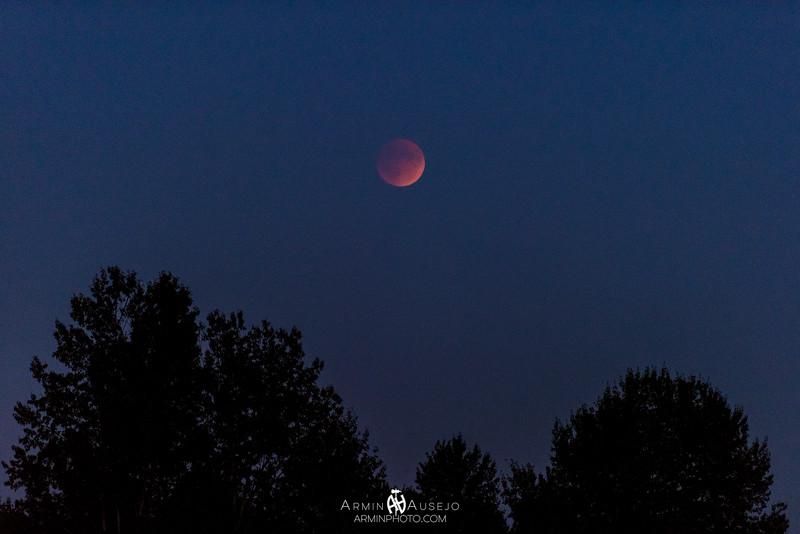 SuperMoonEclipse.jpg