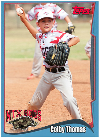 NTX Hogs Trading Cards