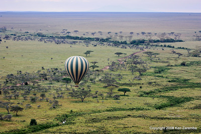 Tanzania- Serengeti National Park
