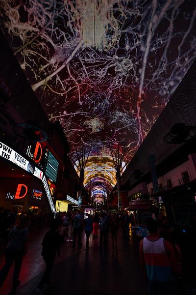 Vegas 0359.jpg