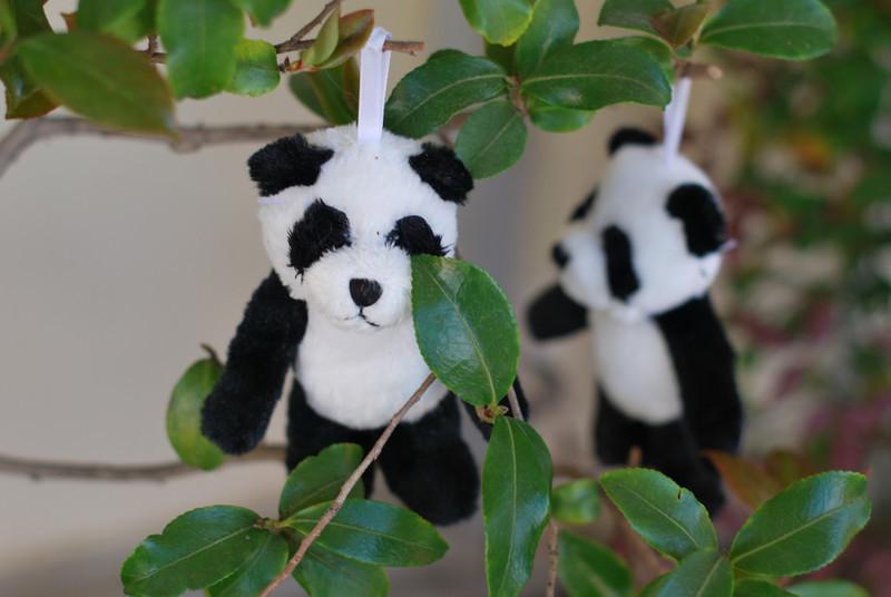 VBS-2011-Pandamania-Wed-50.jpg