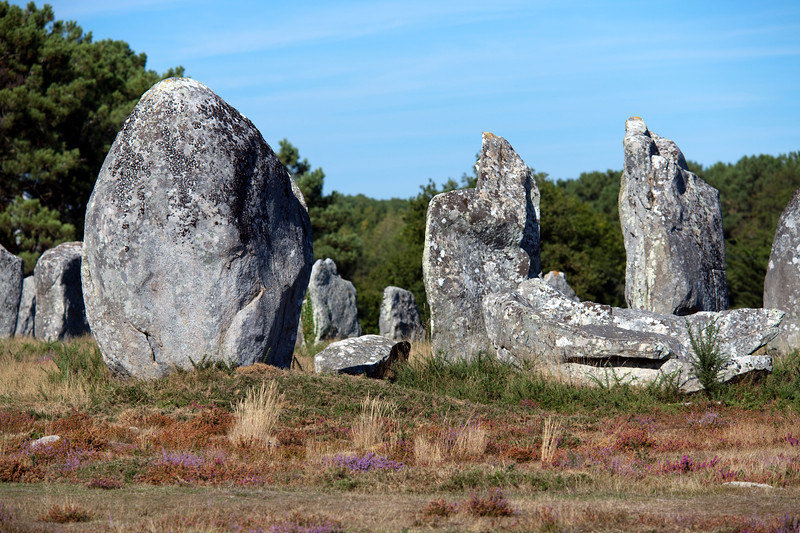 Megalithic alignment of Kermario, town of Carnac, departament of Morbihan, Brittany, France