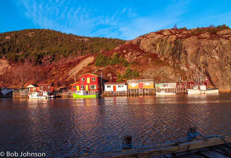 St John's Newfoundland-12-2014-29-2.jpg