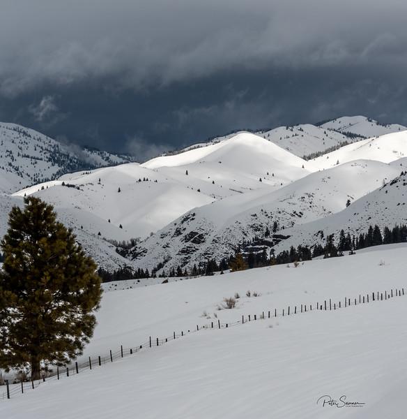 Near Pine Idaho