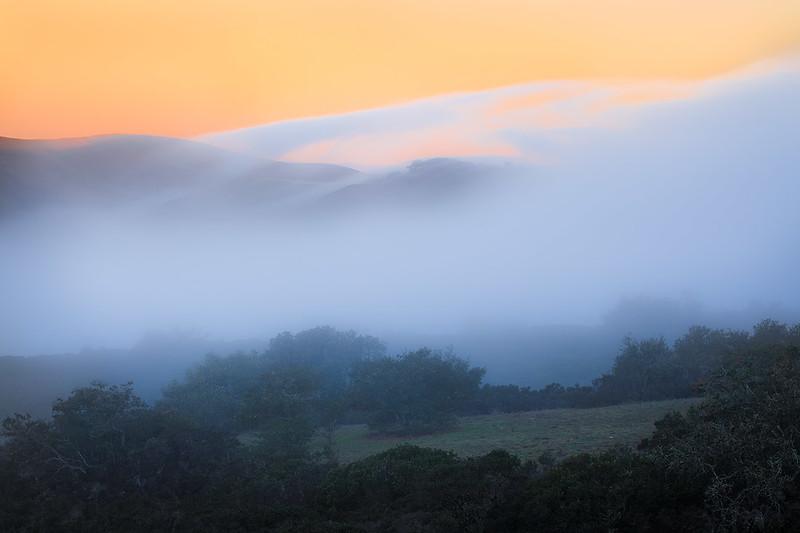 Santa Ynez Mountains Fog Oaks-2821.jpg
