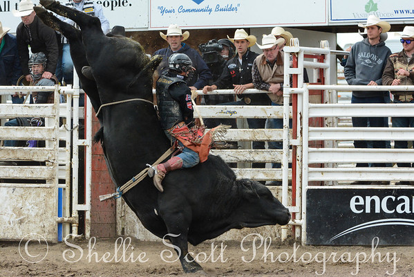 Innisfail ProRodeo - Sunday 2013